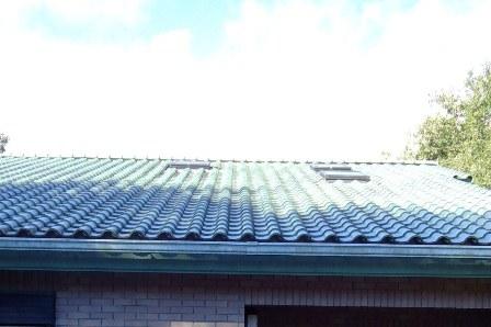 屋根の雨漏り調査